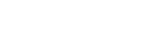 Pynchon Press